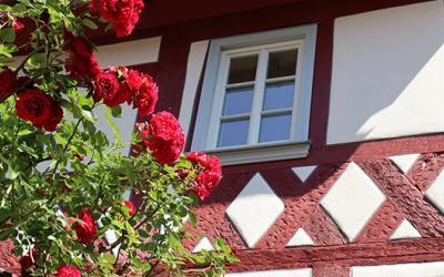 Fachwerkhaus erwacht aus Dornröschenschlaf